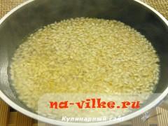 rizotto-so-slivami-04