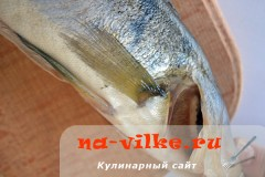 riba-v-soli-02