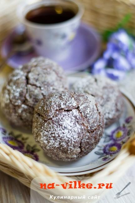 Шоколадное печенье с какао