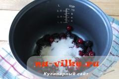kisel-v-multivarke-3