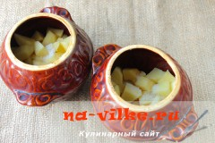 kartoshka-s-mjasom-gorshochki-03
