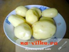 perec-s-kartofelem-gribami-04