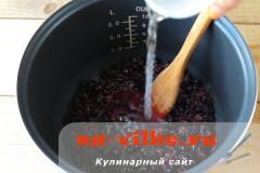 zhele-iz-chernoy-smorodiny-03