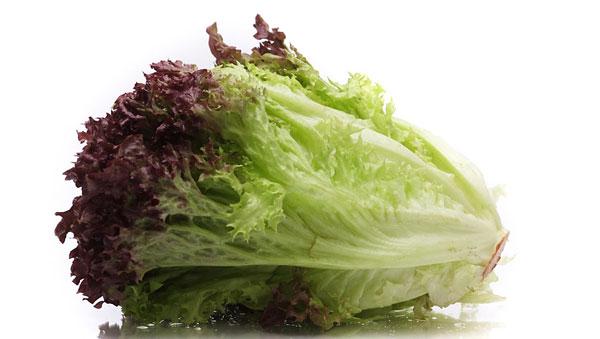 salat-04