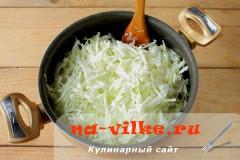 kapusta-veshenki-4