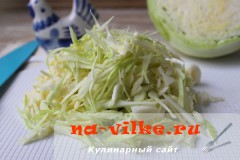 kapustnaya-zapekanka-02