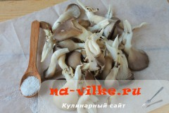 morozit-veshenki-1