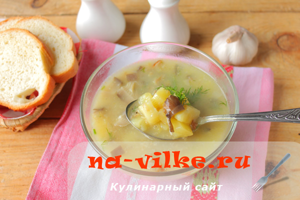 Грибной суп с овсянкой в мультиварке