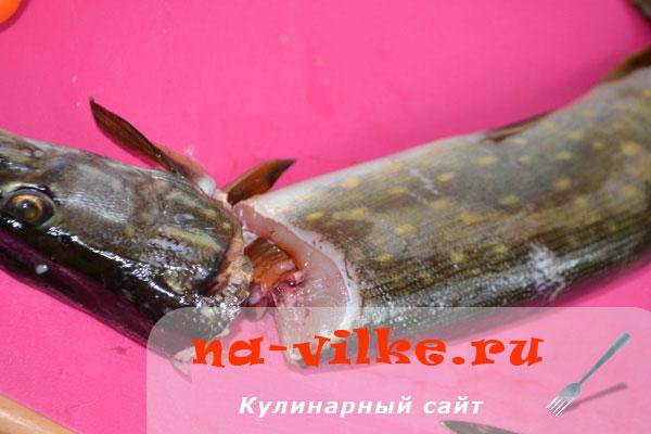 razdelka-shchuki-03