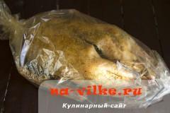 gus-v-rukave-6