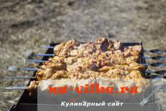 shashlyk-tomatniy-sok-10