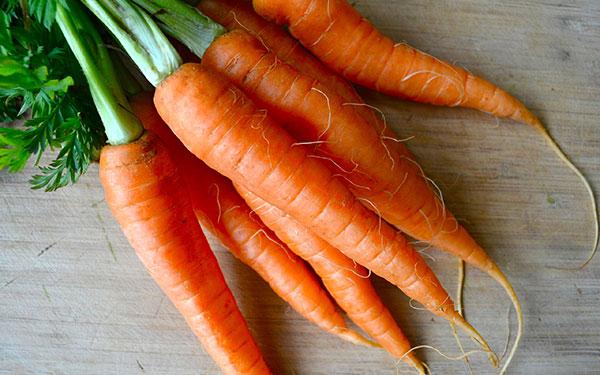 Как хранить морковь всю зиму в домашних условиях