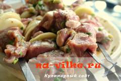 shashlyk-kivi-6