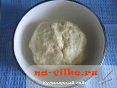 pirozhki-s-kapustoj-mjasom-08