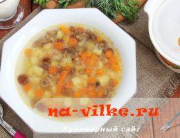Аппетитный суп из опят и овощей в мультиварке