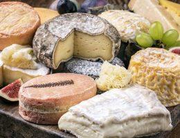 Секреты применения и хранения сыров с плесенью