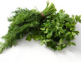 Как хранить свежую зелень - укроп и петрушку